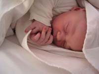 Persuasive Essay On Abortion