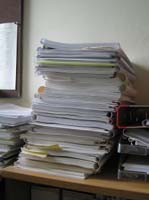 Term Papers For Free